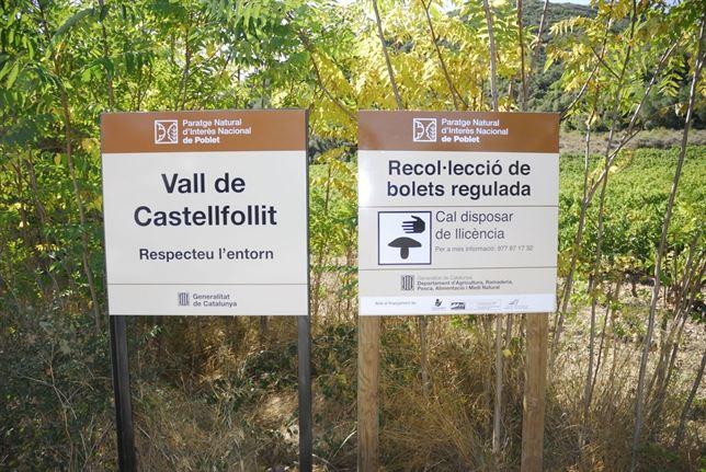 Cestas para Setas en Poblet, Tarragona